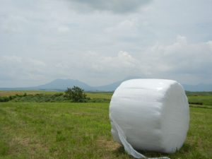 Bale Wrap